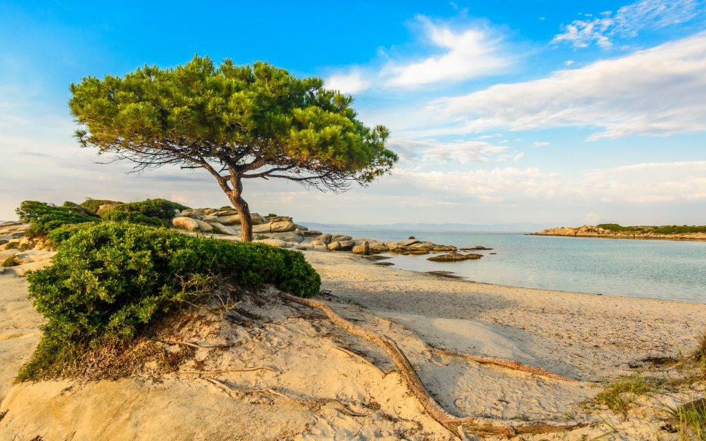 Karydi beach Vourvourou